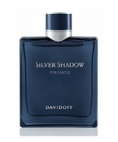 Davidoff Silver Shadow Private edt 50 ml spray